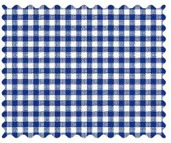 Fabric Shop - Primary Navy Gingham Woven Fabric - Yard