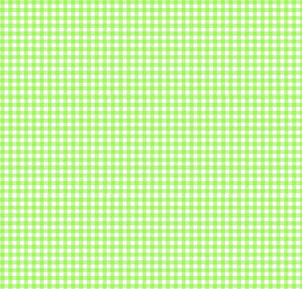 Primary Green Gingham Woven Crib Toddler Sheets