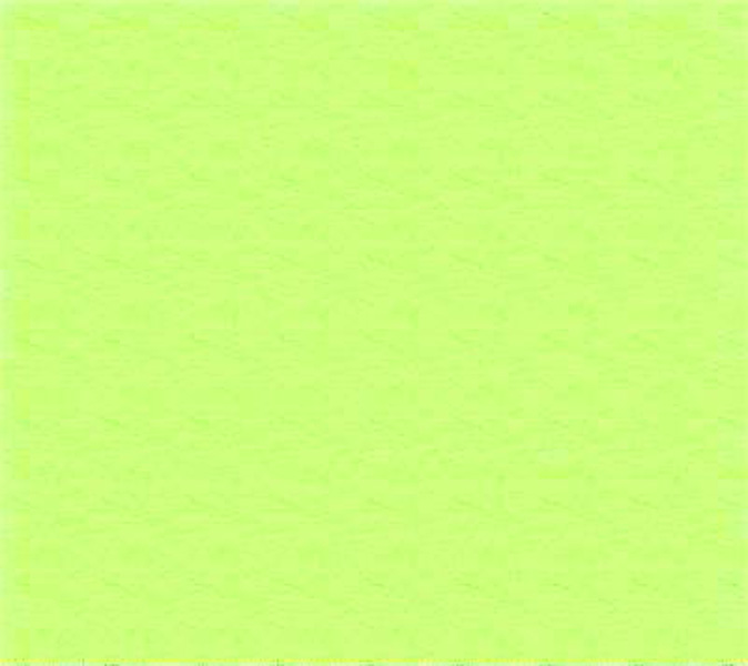 Flannel - Lime Fabric