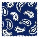 100% Cotton Woven - Primary Paisleys Fabric Shop