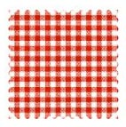 Primary Red Gingham Woven Fabric
