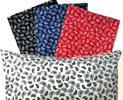 Percale Pillow Cases - Primary Paisley Collection