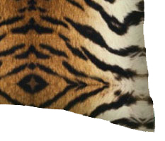 Percale Pillow Cases - Tiger